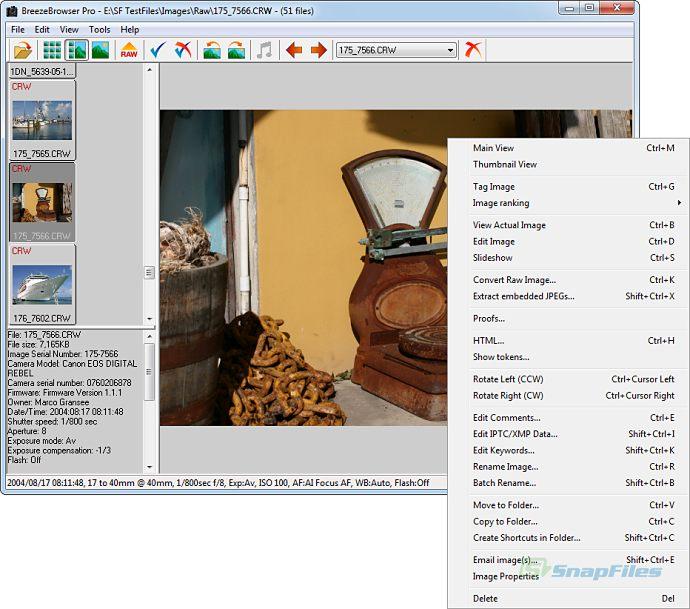 BreezeBrowser Pro 1.9.8.1 [Multi]