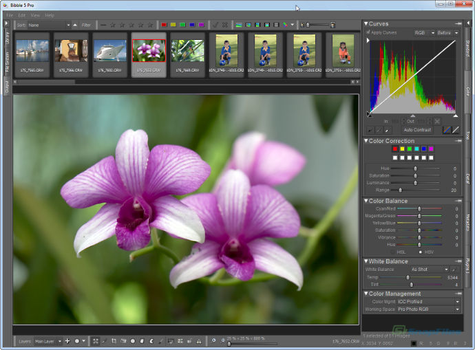 screenshot of Corel AfterShot Pro