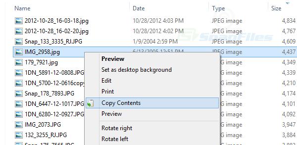 screen capture of Copy Contents