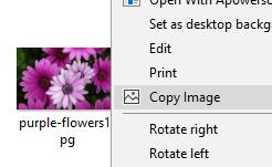 screen capture of Copy-Image
