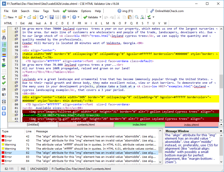 screen capture of CSE HTML Validator Lite