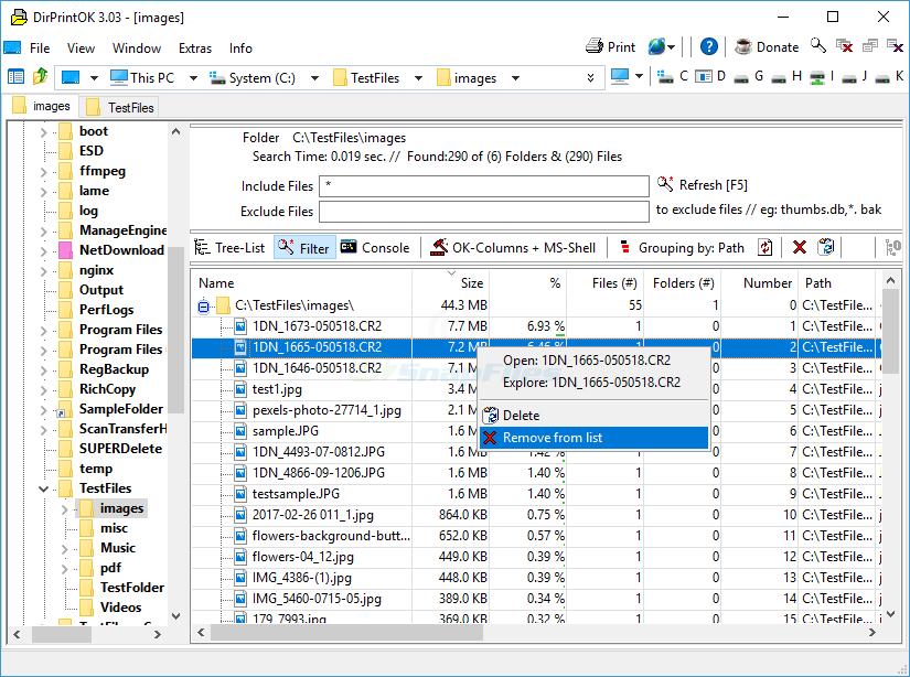 screen capture of DirPrintOK