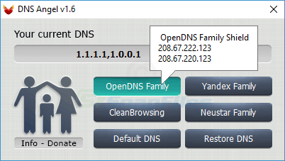 screenshot of DNS Angel