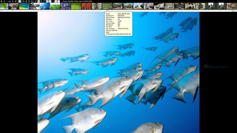 screenshot of Exif Image Viewer