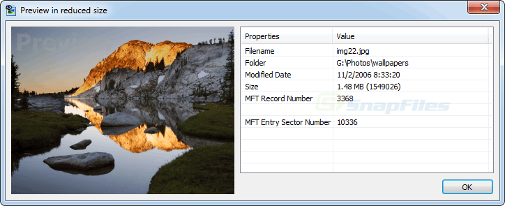 screenshot of File Scavenger