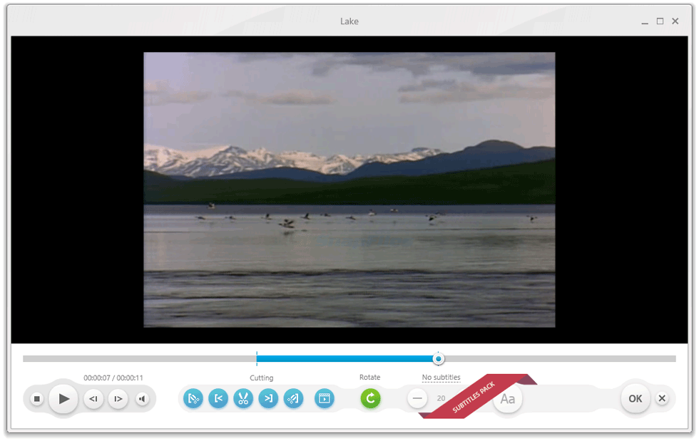 screenshot of Freemake Video Converter