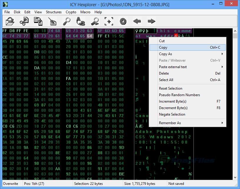screen capture of ICY Hexplorer