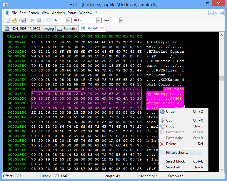 screen capture of HxD Hex Editor