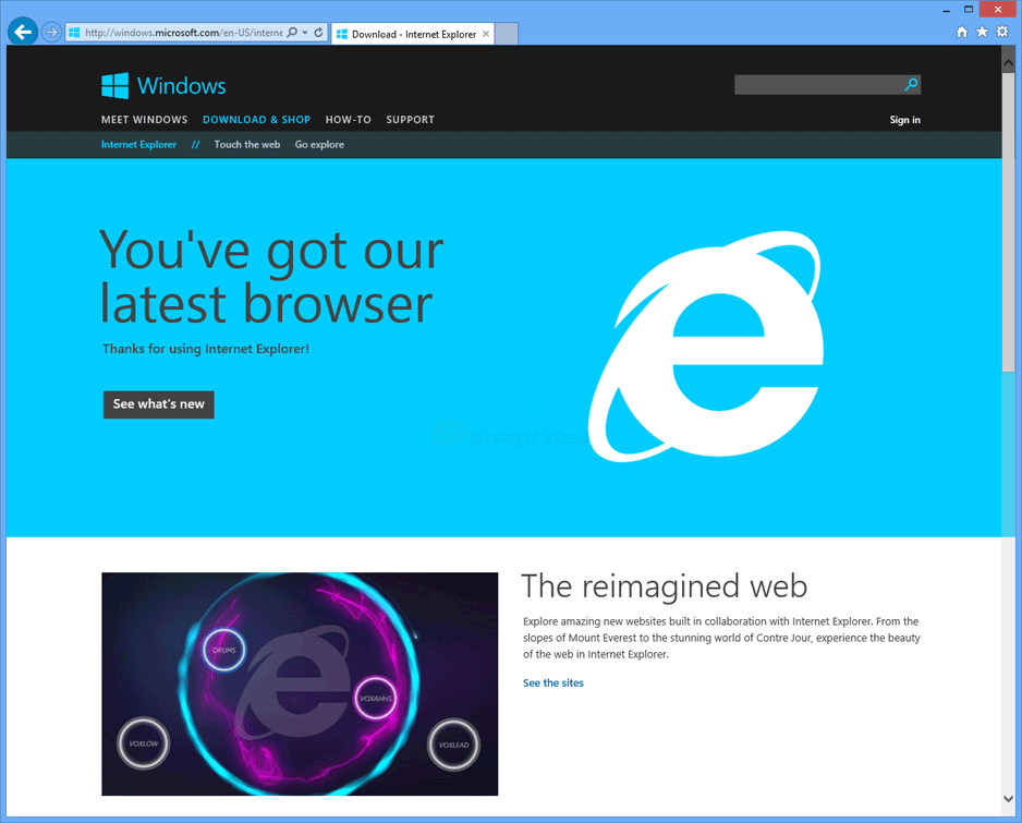 screen capture of Internet Explorer 11 (Win7)