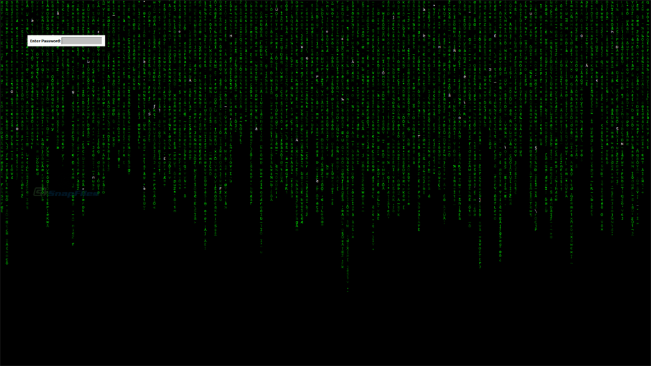 screenshot of Matrix Screen Locker