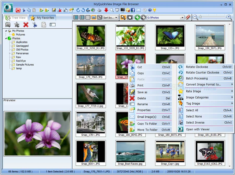 screen capture of MyQuickView