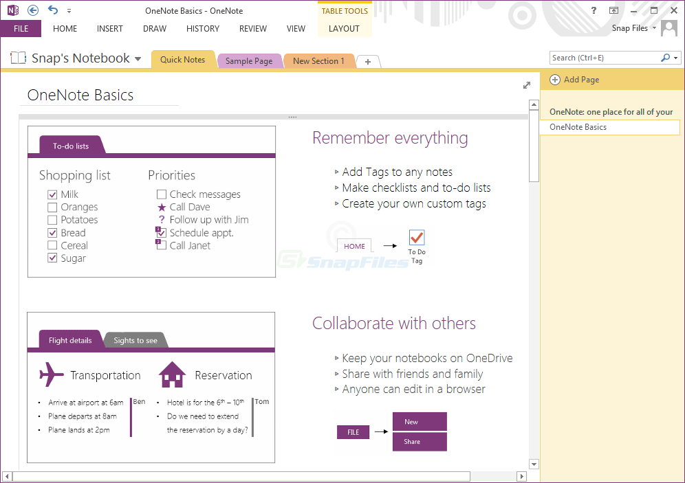 screen capture of Microsoft OneNote