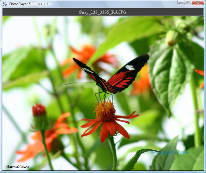 screenshot of PhotoPlayer 6