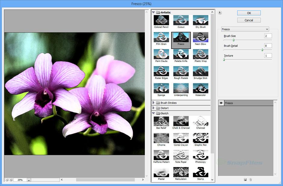 Adobe Photoshop CS2 screenshot and download at SnapFiles com