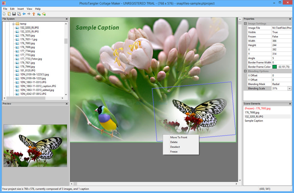 screen capture of PhotoTangler Collage Maker