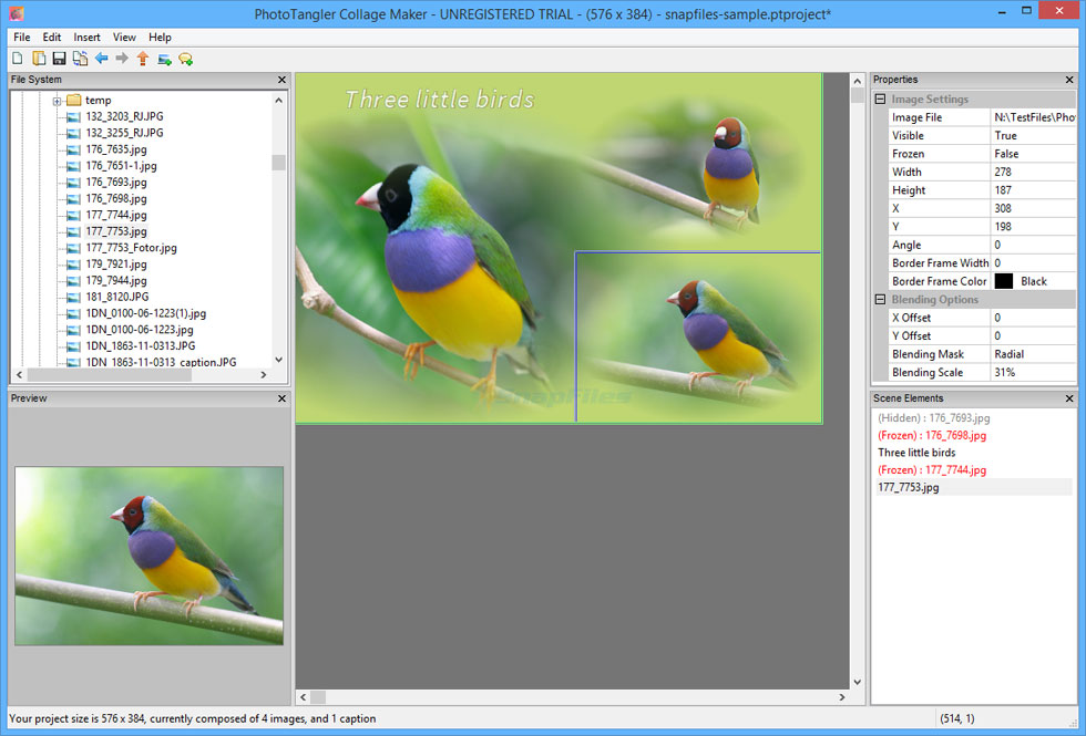 screenshot of PhotoTangler Collage Maker
