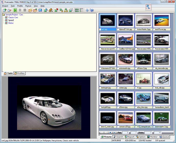 screen capture of PicaLoader