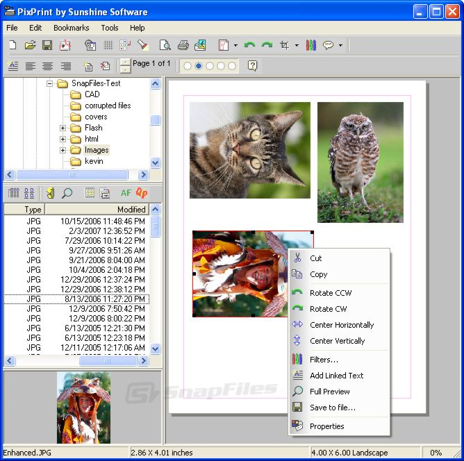 screen capture of PixPrint