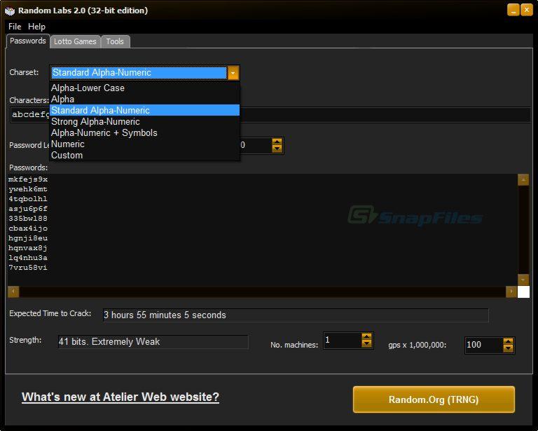 screenshot of Random Labs