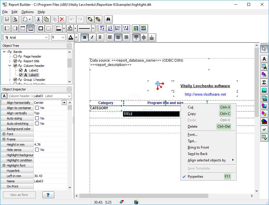 screenshot of Reportizer
