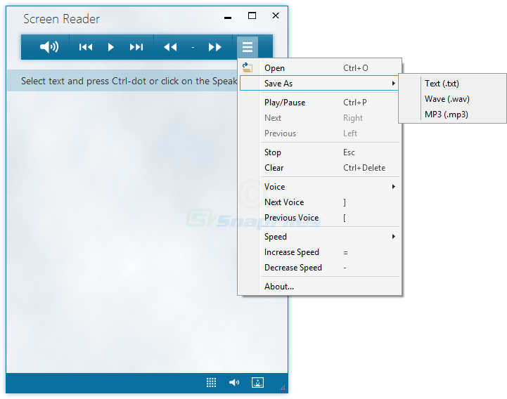 screenshot of Screen Reader