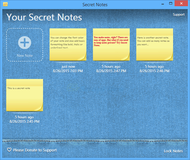 screenshot of Secret Notes