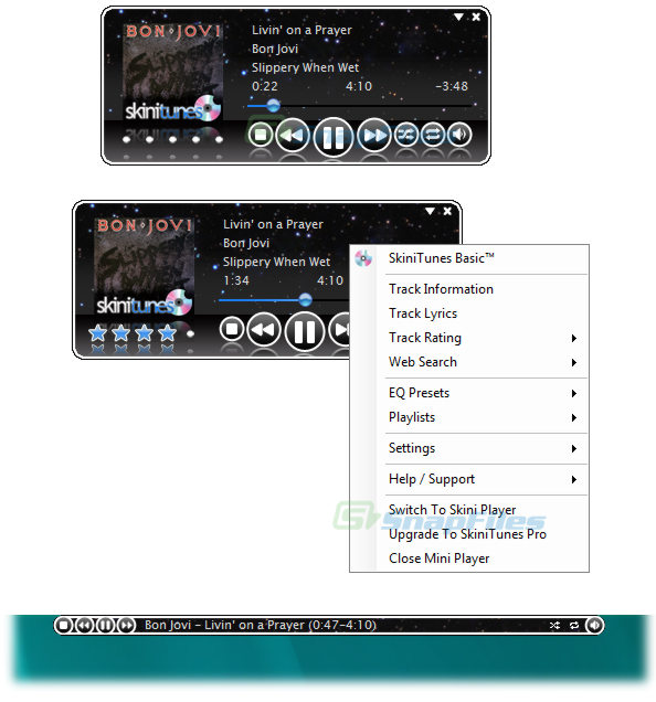 screen capture of SkiniTunes