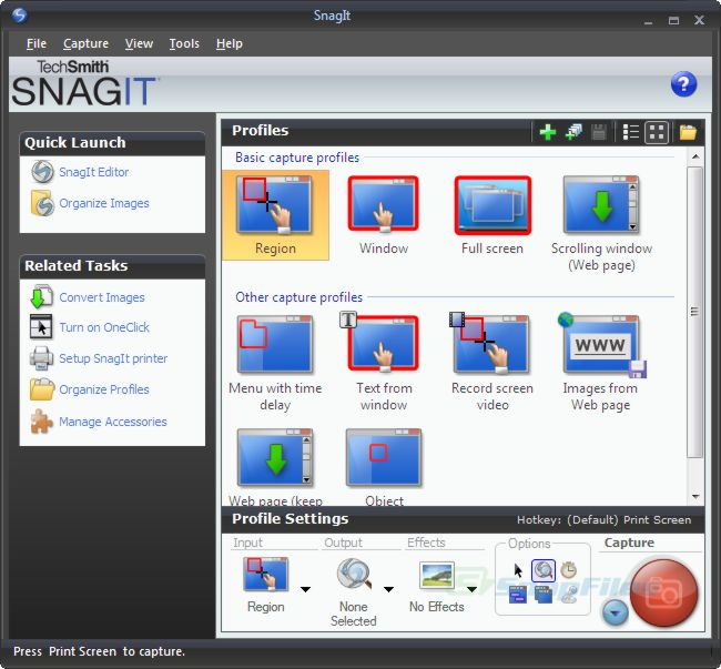 screen capture of SnagIt