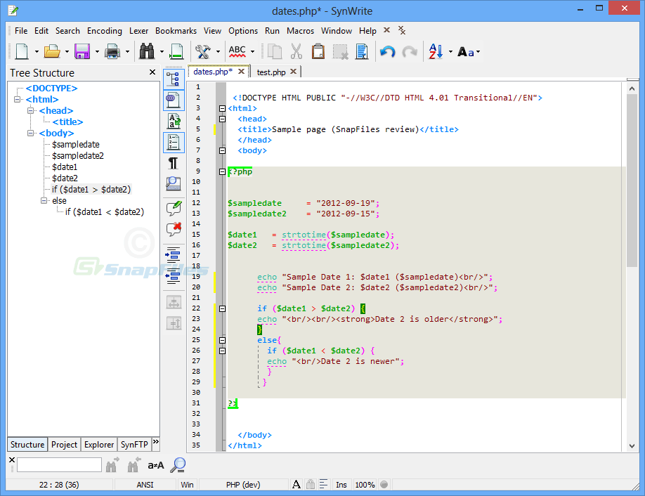screen capture of SynWrite