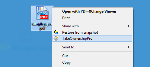screenshot of TakeOwnershipPro