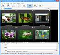 Arles Image Web Page Creator screenshot