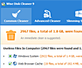Wise Disk Cleaner Free screenshot