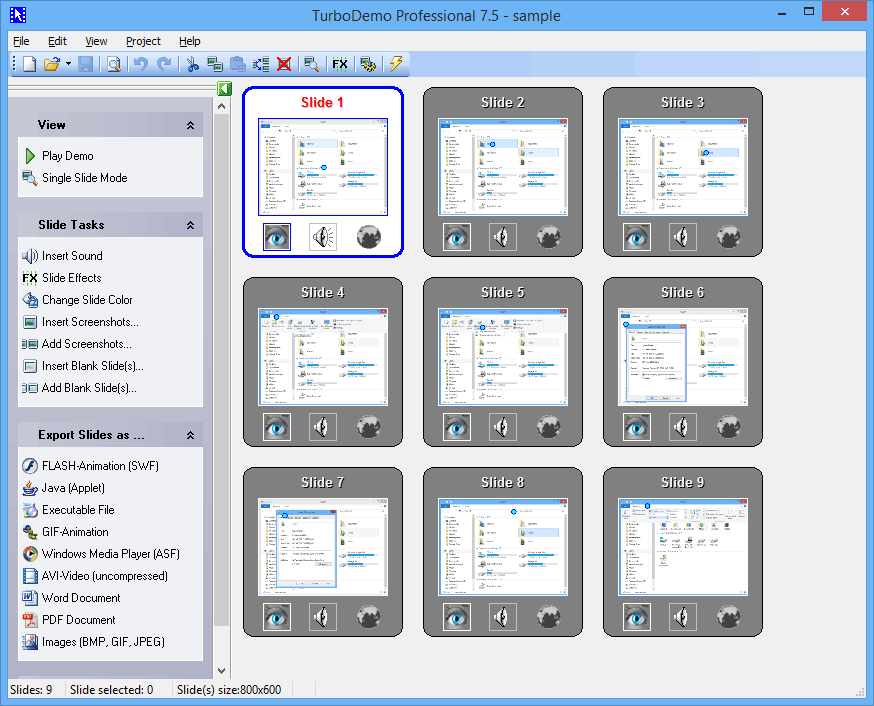screen capture of TurboDemo