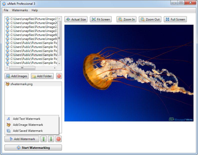 screenshot of uMark Professional
