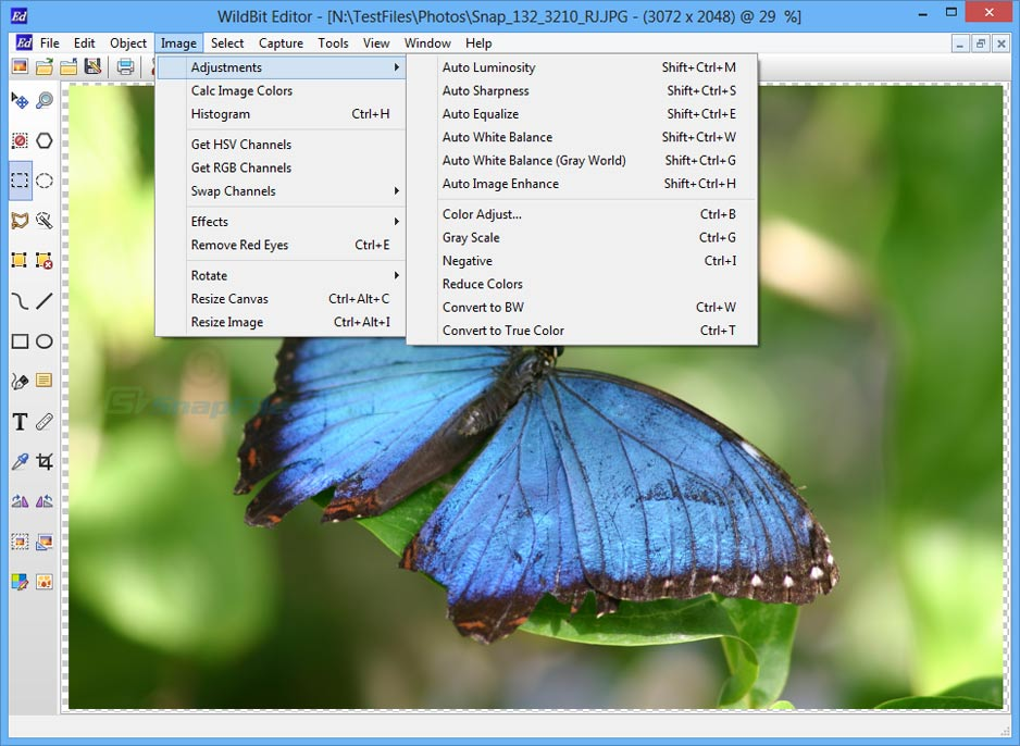 screenshot of WildBit Viewer