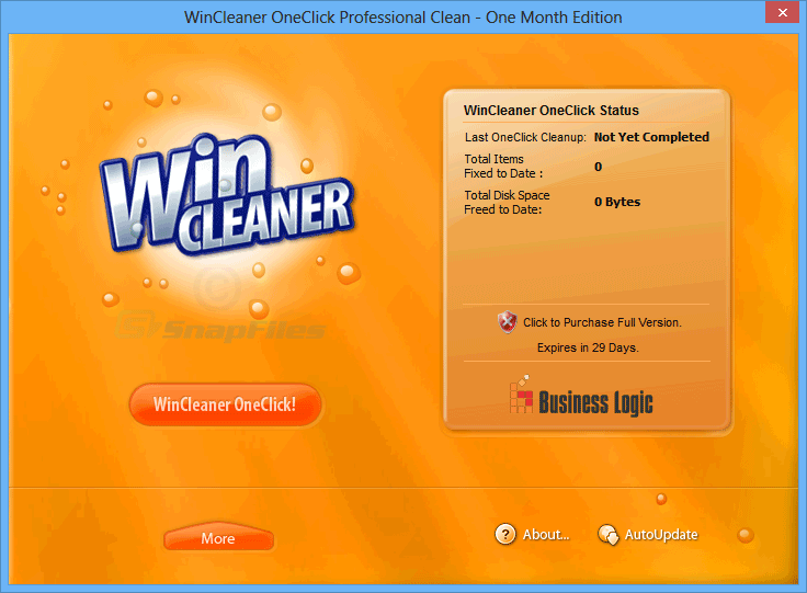 screen capture of WinCleaner One Click